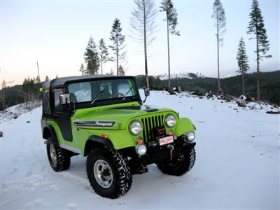 Pete's 1972 CJ5 Renegade