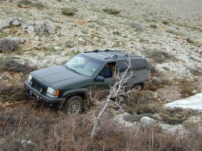 Orvis Jeep Photos 2