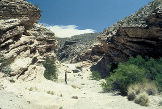 Big Bend National Park Primitive Area!