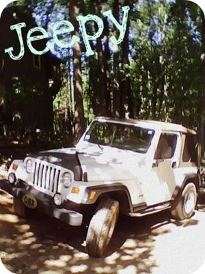 The Jeep :)