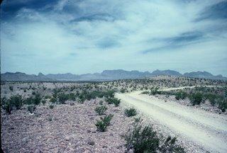 Big Bend National Park Desert Road!