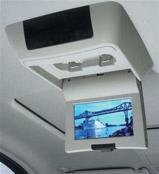 Driving Safety Tips...DVD Player!
