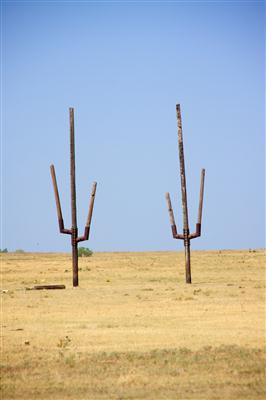 Metal Cactus Art St. Jo Tx Jenifer 7-4-11